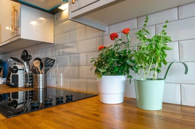 Kuchynská linka, dva kvetináče.jpg